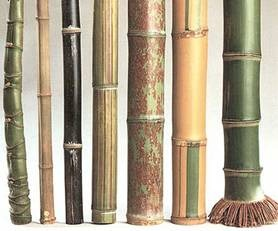 BAMBOO- AGREEN BUILDING MATERIAL