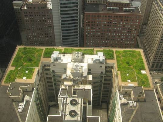 Green roof in Chicago, Illinois