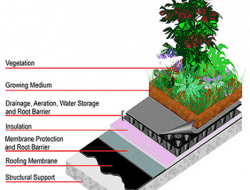 GREEN ROOFING – A STEP TOWARDS SUSTAINABILITY