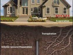 CAUSES OF FAILURE OF FOUNDATIONS IN BUILDINGS