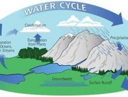 HYDROLOGICAL CYCLE – PROCESS AND COMPONENTS