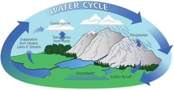 Hydrological Cycle - Processes and Components