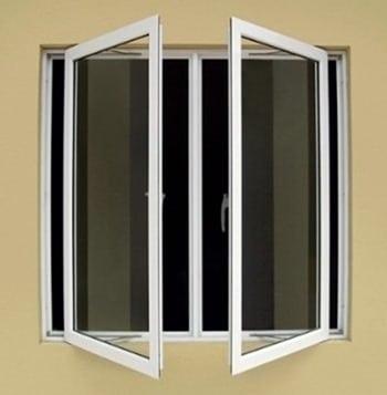 Cat Windows