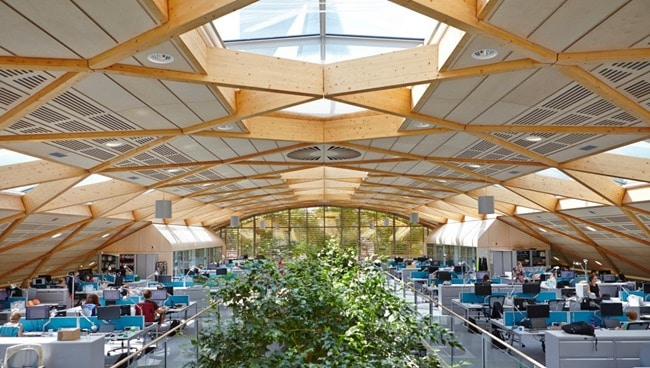Timber Diagrid Structural System