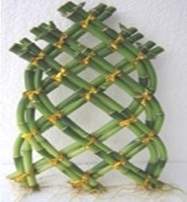 Structural Shapes of Bamboo as a Building Material