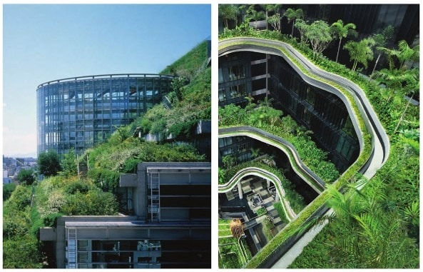 Green walls in high rise buildings types benefits and for Terrace building