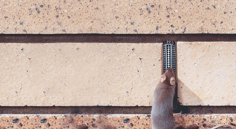 Weep Holes in Retaining Walls -Types, Functions and When it is Required