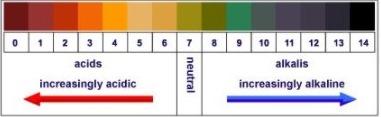 Standard pH Chart