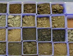 Different Types of Soil –  Sand, Silt, Clay and Loam