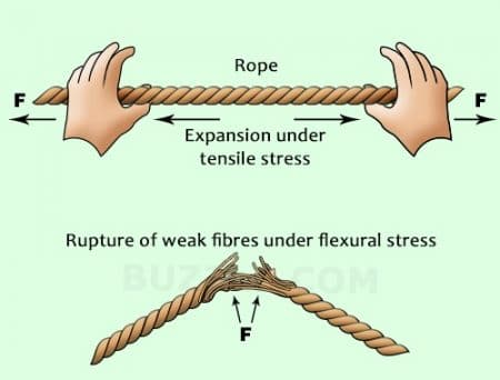 Difference between Rupture and Tensile Strength