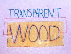 Transparent Wood – Production, Properties, Applications, and Advantages