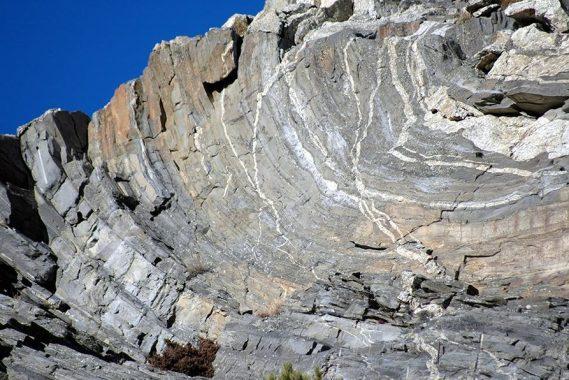 siliceous rocks