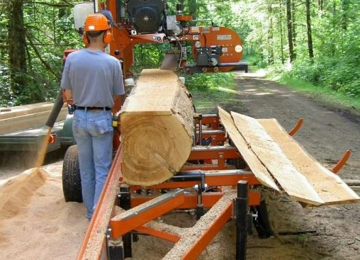 Cutting of Timber