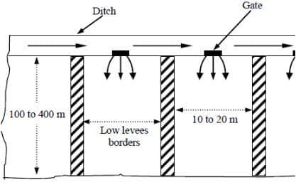 Border Flooding Irrigation