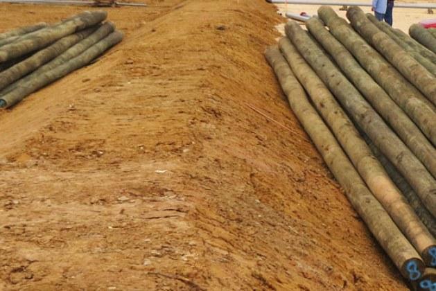 Timber Piles- Advantages, Disadvantages, Classification, and Preventive Treatment [PDF]